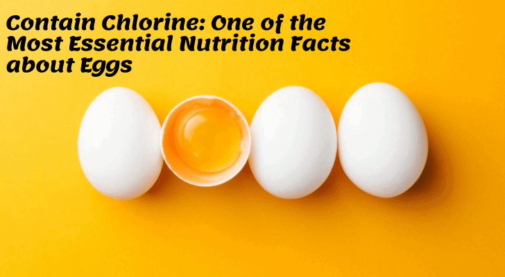 Contain Choline: One of the Most Essential Nutrition Facts about Eggs