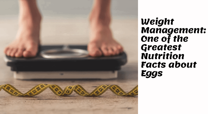 Weight Management: One of the Greatest Nutrition Facts about Eggs