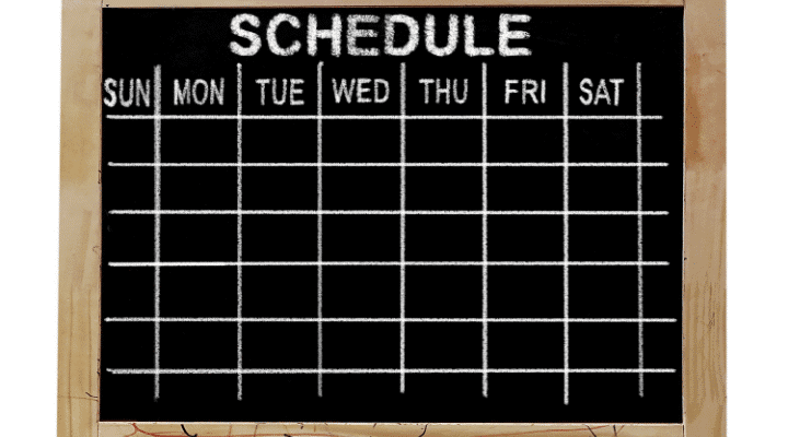 2-Week Schedule Plan