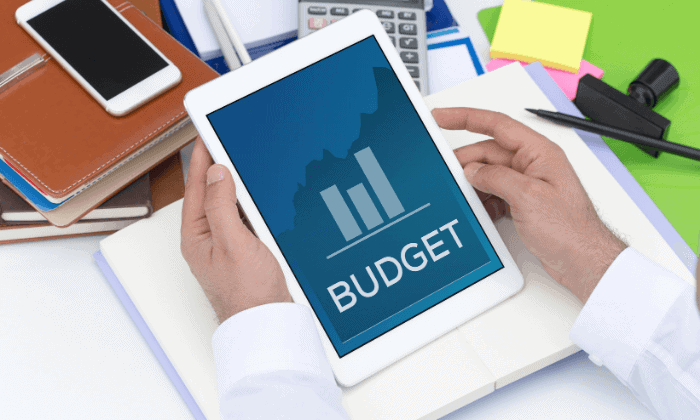 project management software benefits budget management
