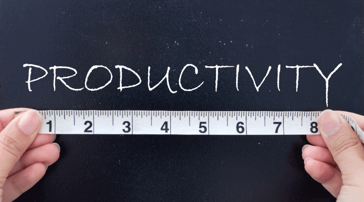 Measuring Productivity Using Whole Sales